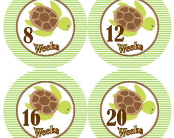 Pregnancy Weeks Baby Monthly Milestone Growth Stickers in Green Brown Sea Turtles Nursery Theme MS554 Baby Shower Gift Baby Photo Prop