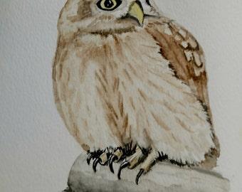 Owl Card Painting, Original Watercolor Bird Wall Art