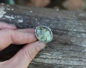 Forest Floor - Lichen Focus Ring