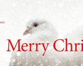 Merry Christmas - Facebook Timeline Cover With Holiday Greetings For Your Personal Page -Peace Love Doves In A Snow Storm -Instant Download