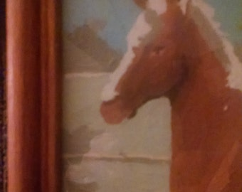 Framed Paint-By-Number Horse Picture