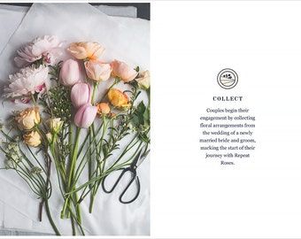 Brand and Identity for zero-waste flower repurposing service - logo, business cards, packaging design, tags and look book design