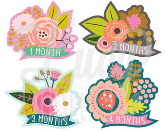 Baby Monthly Stickers- Baby Girl Monthly Stickers- Blossom- Floral Baby Monthly Stickers- Milestone Stickers- Bodysuit Stickers- Set of 12