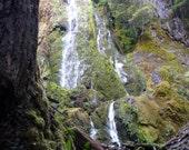 Moon Falls, Oregon, DIGITAL DOWNLOAD,  waterfall decor, forest waterfall decor, logs, woods, moss, rocks, fine art photography