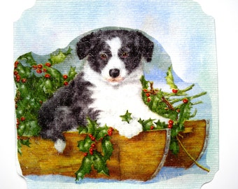 """Very pretty greeting card and its matching decorated envelope """"Joli Petit Chien""""."""