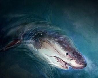 Hello Shark (9X 12 Print)