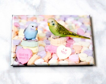 Budgie Love Refrigerator Magnet • Romantic Magnet •Valentines Gift • Bird Lover Gift • Animal Magnet •  Animal Tales • Gifts Under 5