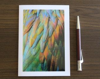 Modern Greeting Card, Handmade Birthday Card, Iridescent Feathers Photo, Green Orange Blue, 4x6 Art Print