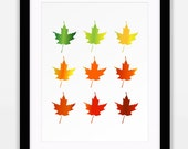 Seasonal Leaves Art, Mapl...