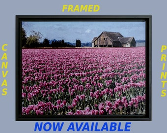 Fine Art Framed Canvas Prints, Canvas Images,