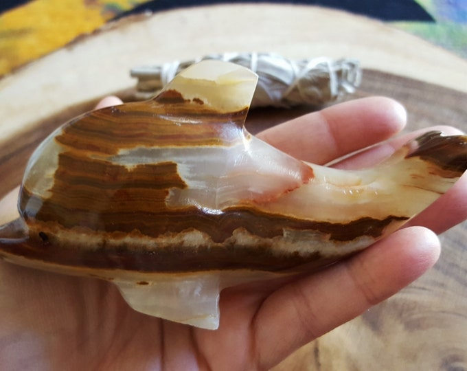 Pakistani Onyx Dolphin ~ One Large Reiki Infused gemstone dolphin approx 4 inches (POD01)