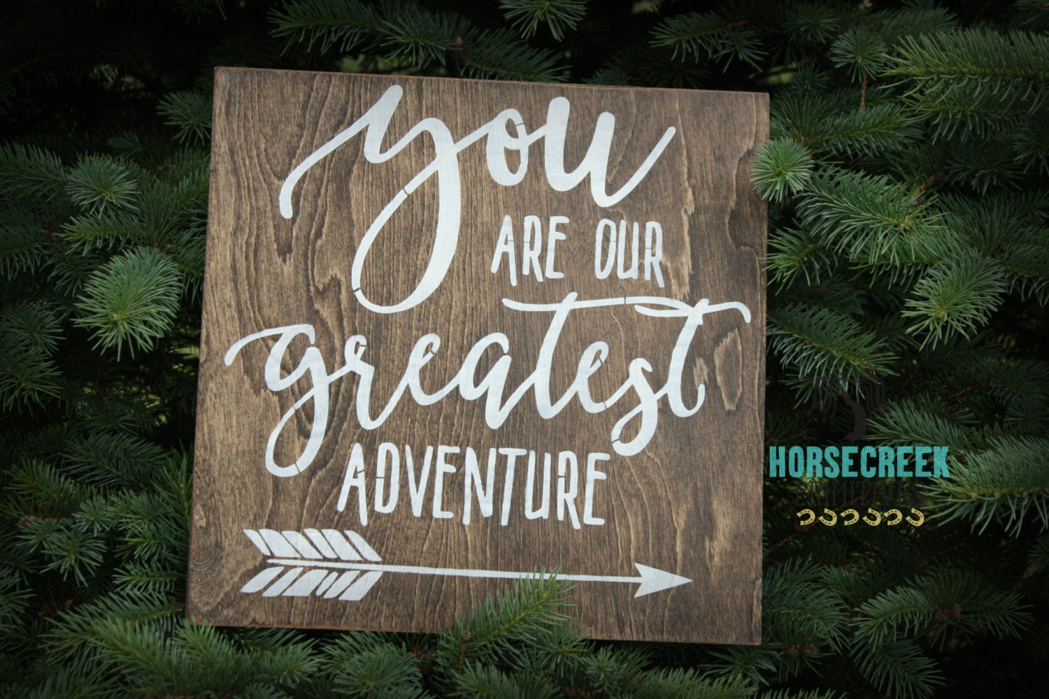 You Are Our Greatest Adventure Rustic Wood Sign Rustic
