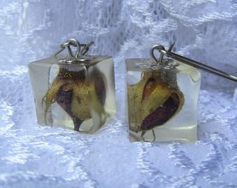 Dried Rose Resin Earrings Dried Real Flower Resin Earrings Nature Inspired Earrings Botanical Earrings Resin Real Rose Earrings