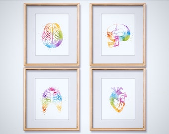 Watercolor Anatomy Art Print Set - Med Student Gift - Anatomy Decor - Human Anatomy - Medical Gifts - Heart Anatomy - Medical Office Decor