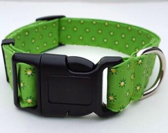 Dog Collar - Green Daisy Fabric