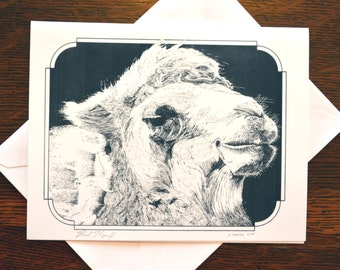 Camel Note Cards