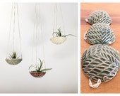 air plant hanging planter / air plant holder / textured 3.5-4'' wide / oribe green