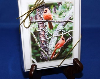 Cardinal Note Cards by BirdTalks©