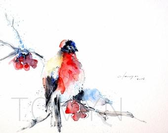 Bullfinch. BIRDS Wall Art. Red-colored Birds .Winter Birds. Original watercolor painting.