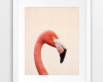 Flamingo Print, Tropical Wall Art Print, Exotic Bird Decor, Tropical Home Decor, Flamingo Photo, Pink Pastel, Kids Room Decor, Printable Art