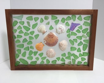Framed green & lavender beach/sea glass and shells in mahogany frame
