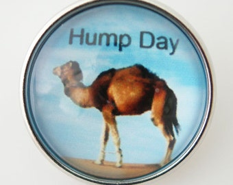 NEW! KB2913-N Hump Day Art Glass Print Snap