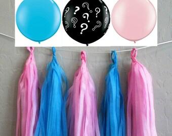 Gender Reveal Tassel Balloon Tail Wall Garland Pink and Blue Tissue Garland Balloon Tassel Baby Shower Decoration