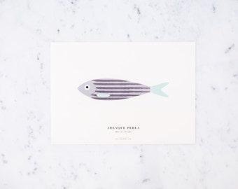 Print-A4 WATER HERRING (herring Pearl)