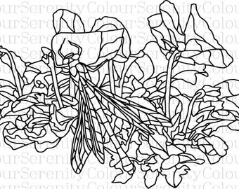 Adult Coloring Page - Dragonfly - Printable Instant Download #4
