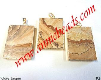 Fall Color !!!! Beautiful Natural Picture Jasper Pendant !!!!