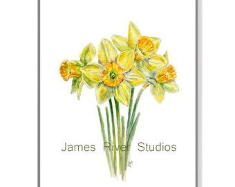 Daffodil Watercolor Painting Daffodil Art Print. Daffodil Painting Daffodil Print Yellow Daffodil Poster Daffodil Decor Daffodil Wall Art.