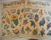 The Literary Digest - 1933 - February 4th and February 11th issues - Fine - Lot of Two Magazines