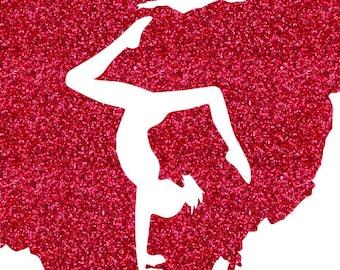 Ohio Gymnast Split Iron On Decal