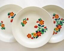 1970s Colditz Porcelain plates with retro style flowers