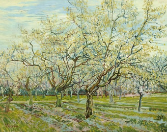 The White Orchard by Vincent Van Gogh, Giclee Canvas Print