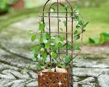 Miniature trellis planter, fairy garden trellis, fairy garden flower pots, miniature planters, succulent cutting pots