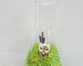 Painted Turtle Skull in an Erlenmeyer Flask - Bone Art, Lab Glass, Oddity, Curiosity