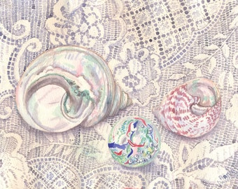 Shells and Lace Greetings Card