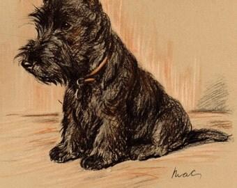 1937 LUCY DAWSON Vintage Colour Dog Print TIMOTHY Black the Scottish Terrier