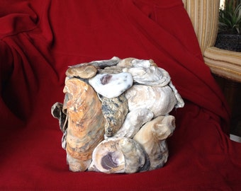 oyster shell tissue box cover
