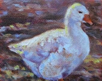 White Goose 4x5