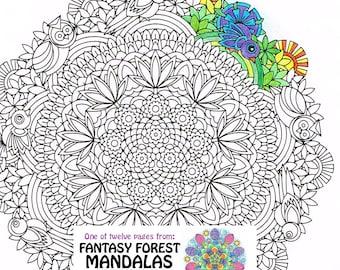 Mandala Coloring Page Magic Mushrooms Instant Download PDF