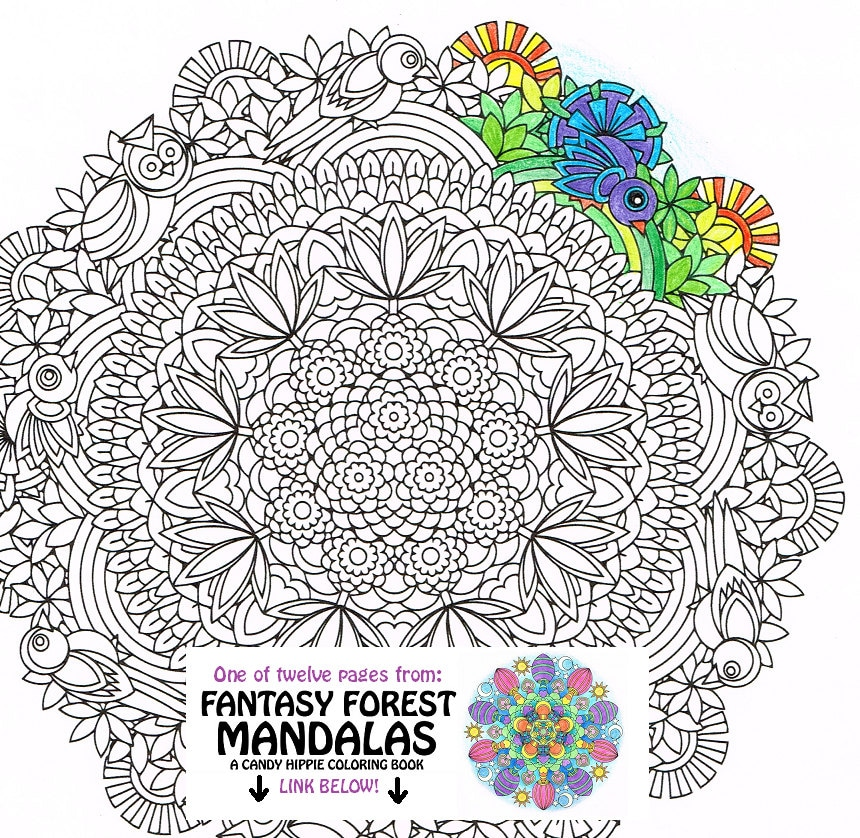 mandala coloring pages birds - photo#19