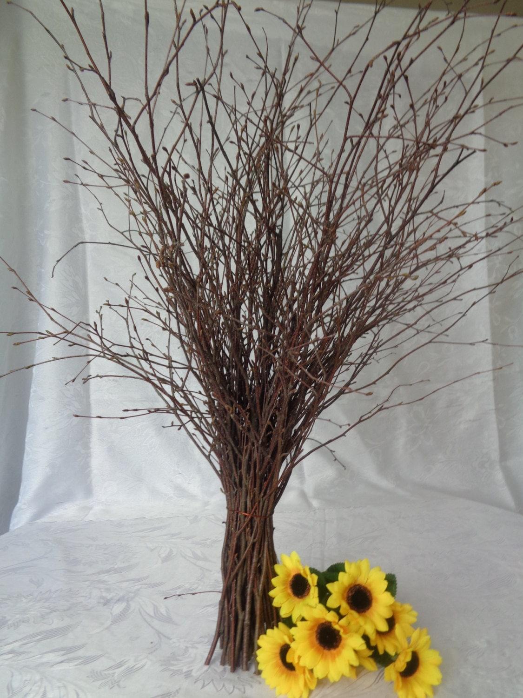 Bundle of birch twigs birch bark wedding decor birch tree for Tree twigs decoration