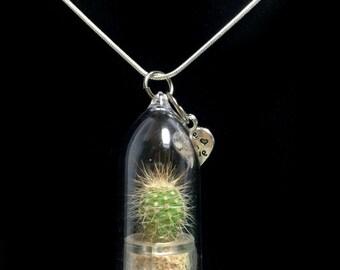 Wearable Cactus Necklace / Mini Cactus Terrarium Necklace / Miniature Terrarium / Nature Jewelry Necklace