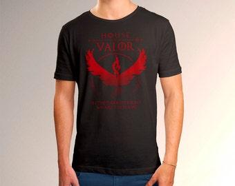 Pokemon Go House Valor Men's T-Shirt