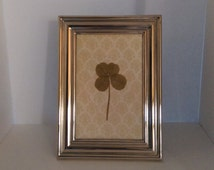 Real four leaf clover in silver plated frame