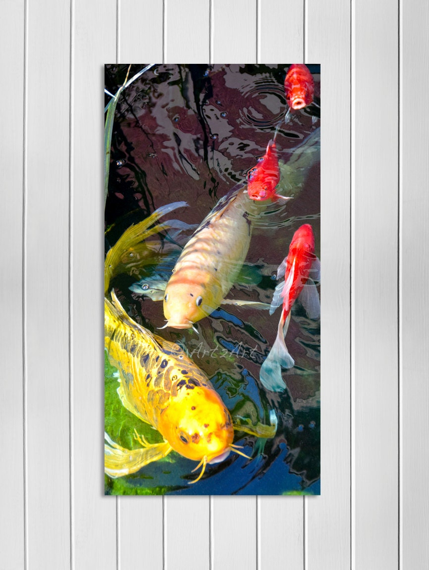 Koi fish wall art koi fish island art koi home decor key for Koi carp wall art