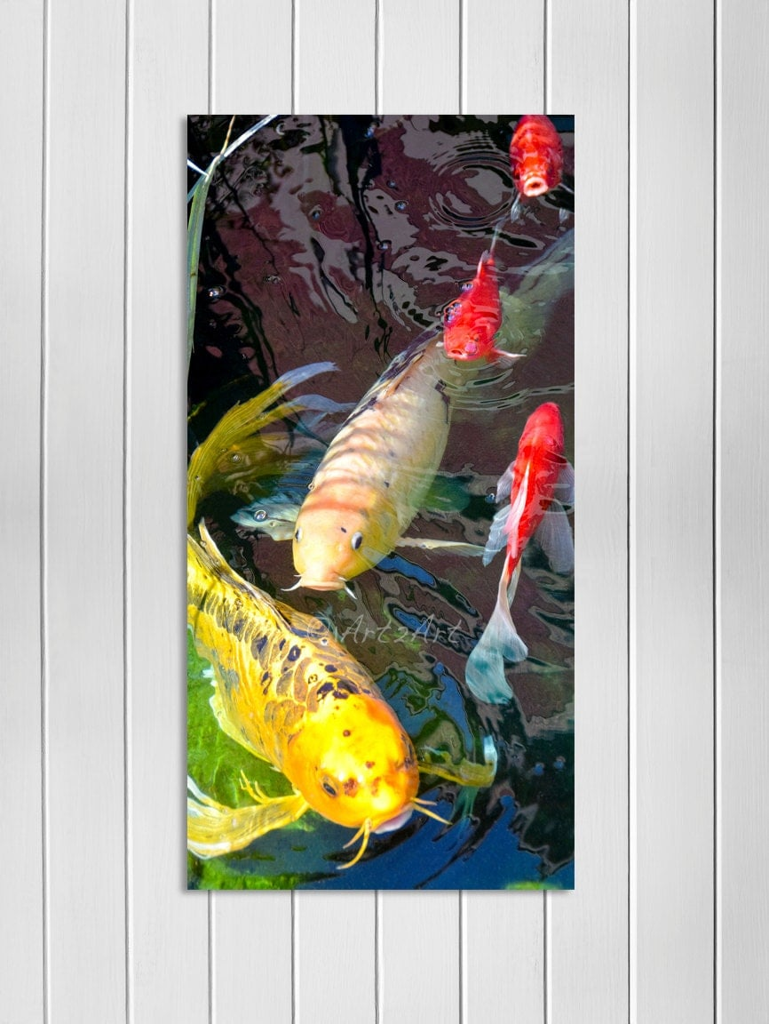 Koi fish wall art koi fish island art koi home decor key for Koi home decor