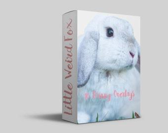 10 Easter bunny overlays Digital Files